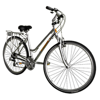 Vélo tout chemins