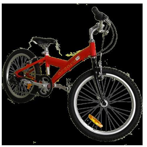 a31ec1514c996 Location de vélos - La Palmyre - Ronce les bains - DriveCycles.fr